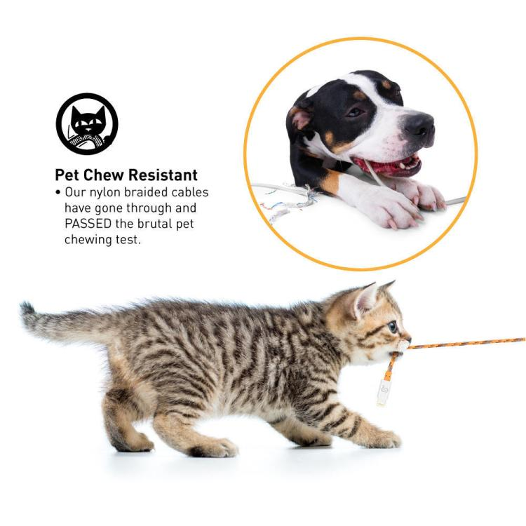 The no.1 pet chew resistant mobile cable at PrimeCables.ca